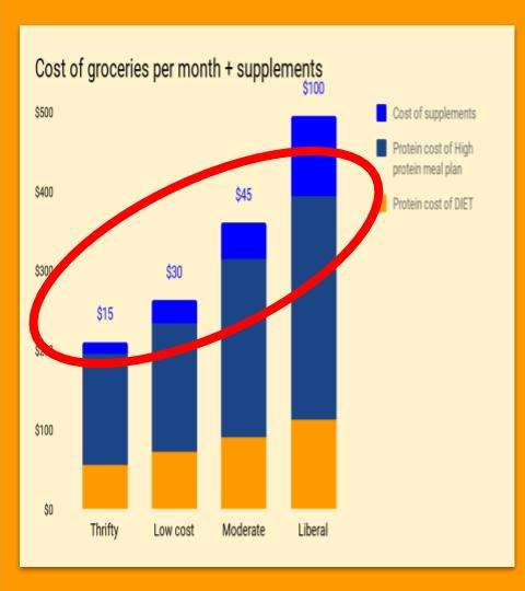 cost of groceries plus protein per month